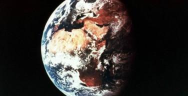 Ученые: Земля вступает в новую фазу вымирания