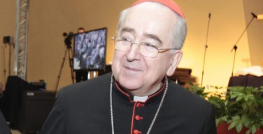 Кардинал Рылко: ВДМ в Кракове будет Юбилеем молодёжи