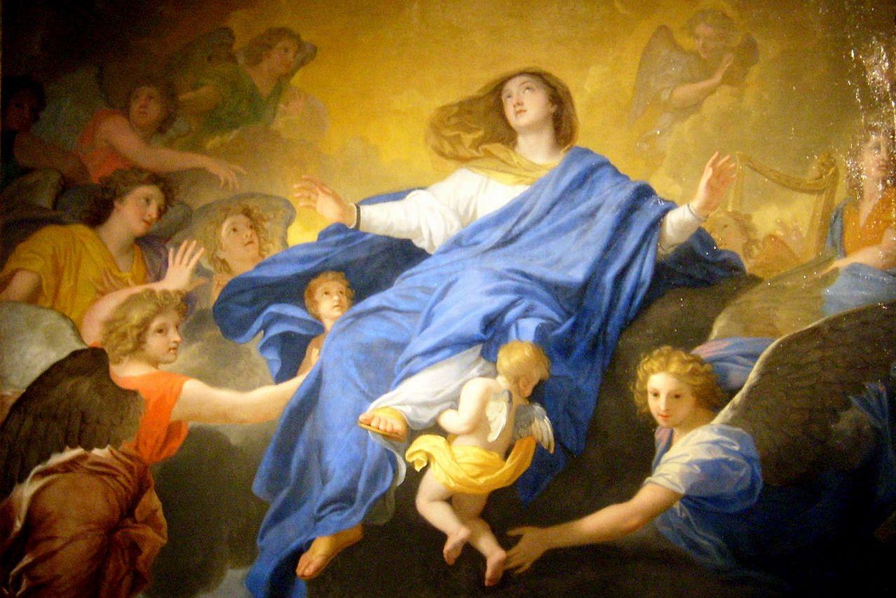 Твит Папы Франциска: великие дела Божьи творятся через смиренных