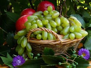 Первые плоды нового урожая