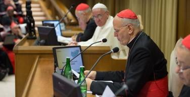 «Самое большое милосердие – это говорить правду с любовью». Вступительный доклад кардинала Петера Эрдё
