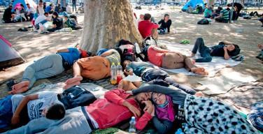 Исследователи: доля мусульманского населения в странах Европы продолжает неуклонно расти