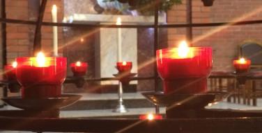 Торжество Всех Святых в Кафедральном соборе