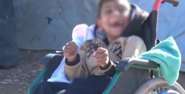 СМИ: Боевики ИГИЛ казнили 38 детей с синдромом Дауна
