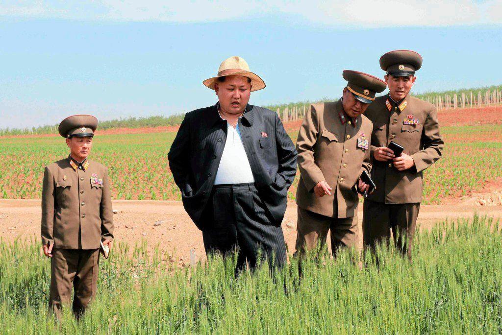 Власти КНДР призвали граждан готовиться к голоду