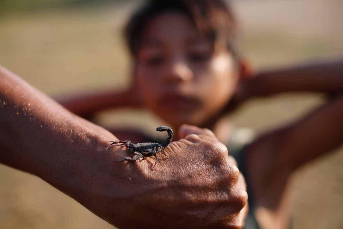 Амазония: епископу угрожают смертью за борьбу против сексуального насилия над малолетними