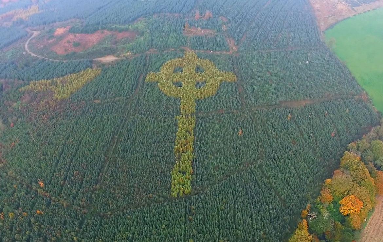 Ирландский лесник высадил деревья в форме креста (ВИДЕО)