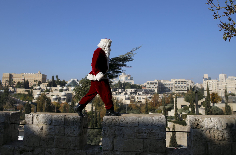 Война за ёлки расколола израильское общество