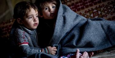 Папа призвал епископов защищать детей от новых Иродов