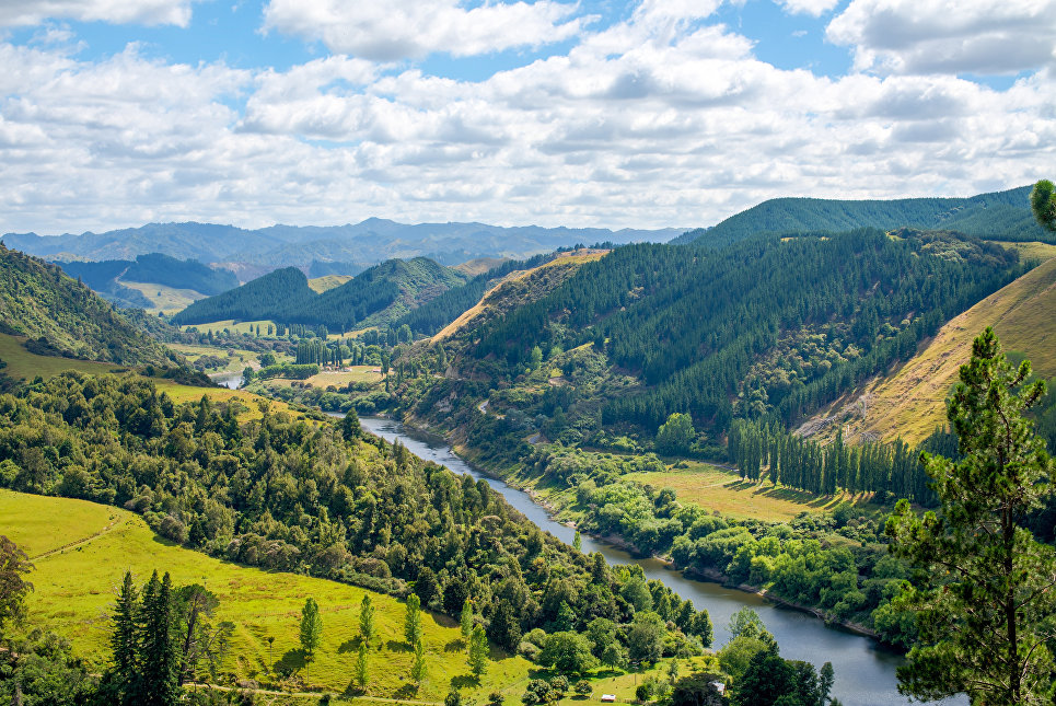 Река в Новой Зеландии впервые в мире получила права человека