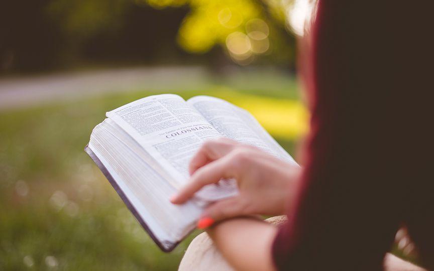 Согласно исследованию, Библия имеется у 87% американских семей