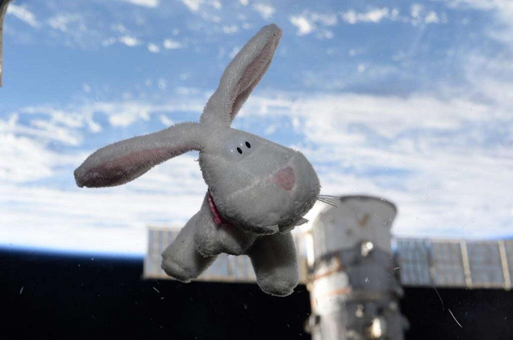Пасхальный обед в космосе: мясное ассорти и витаминный напиток (ВИДЕО)
