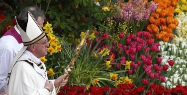 Тысячи цветов украсят Ватиканскую площадь