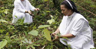 Католические организации отказываются от поддержки нефте-, газо- и угледобывающих компаний