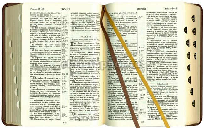 Время для нового перевода Библии на русский язык еще не пришло, считает глава ОВЦС