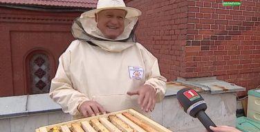 На крыше Красного костела в Минске поселили городских пчел