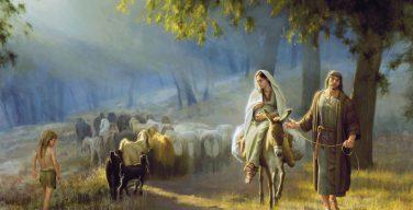 Из «мира животных» — в Вифлеем