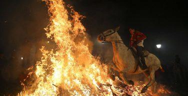 В честь святого покровителя животных в Испании прошла церемония огненного «очищения» лошадей