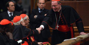 Нидерландский кардинал считает, что Папа Франциск мог бы точнее объяснить «Amoris Laetitia» в специальном документе