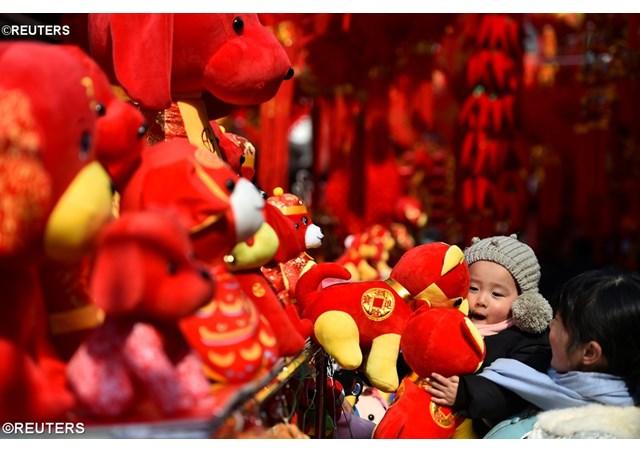 Папа Франциск поздравил народы Дальнего Востока с наступающим «китайским» Новым годом