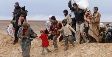 Папа Франциск о необходимости Глобального договора о миграции