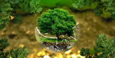 Святейший Отец: необходимо уважать обязательства в отношении климата