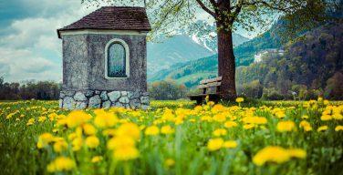 ЛЕТНИЕ РЕКОЛЛЕКЦИИ ДЛЯ ПЕДАГОГОВ С ИЕЗУИТАМИ