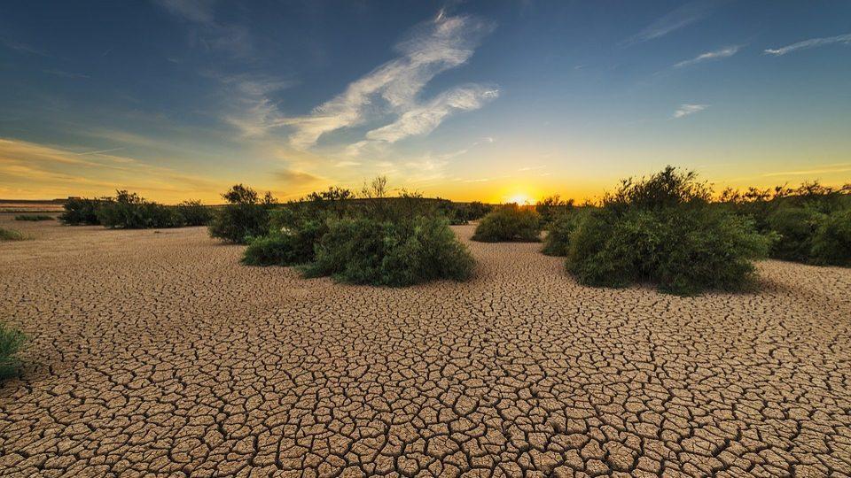 «Каритас» призывает встать на борьбу с голодом в регионе Сахеля