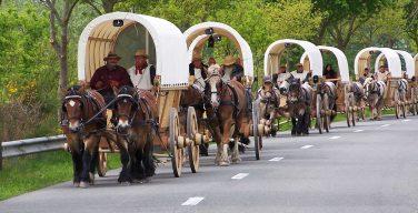 Пастор из Германии на лошадях привезет в Россию «колокол мира»