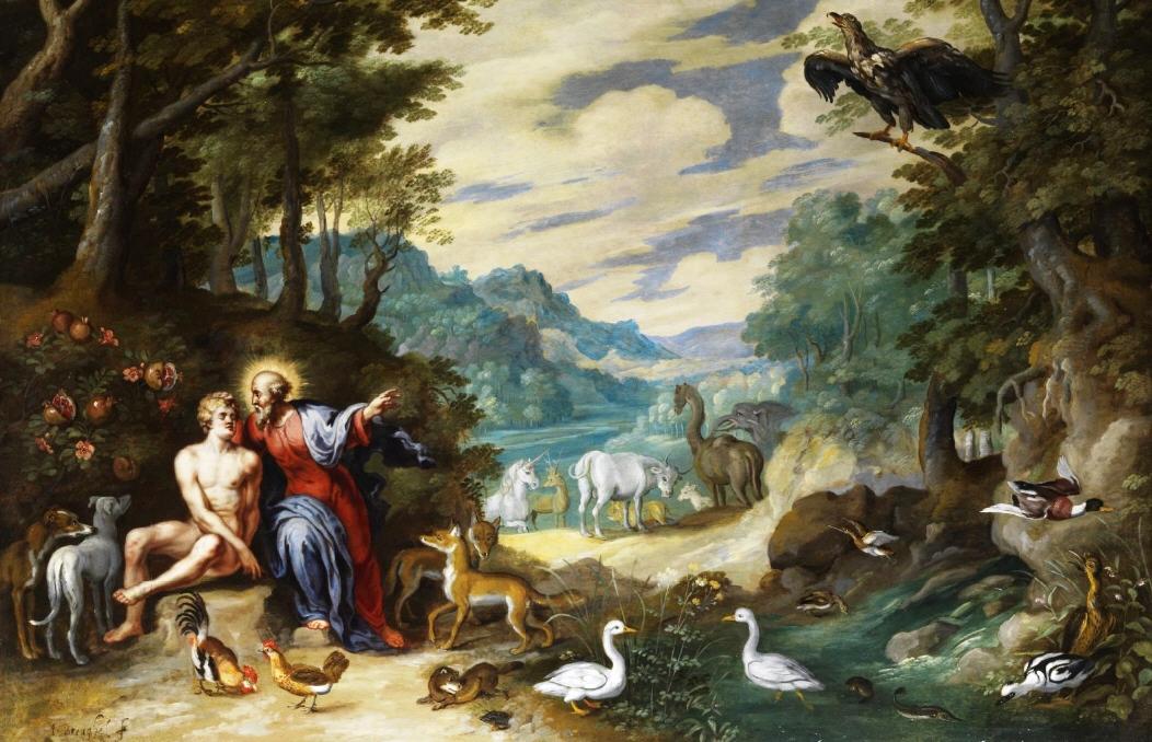 Послание Папы на Всемирный день молитвы о защите Божьего творения