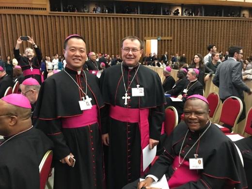 Архиепископ Павел Пецци о Синоде епископов
