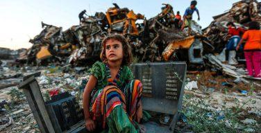 Святейший Престол о помощи палестинским беженцам