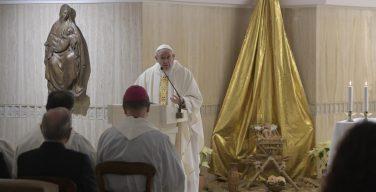 Папа: культура безразличия — противоположность Божьей любви
