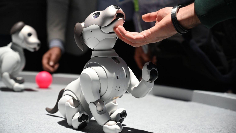 В Ватикане обсудят этические проблемы робототехники