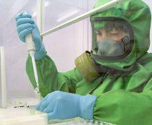 Новосибирские ученые завершили испытания вакцины против лихорадки Эбола