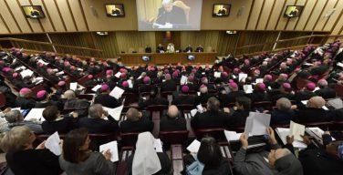 Папа Франциск открыл встречу посвященную защите несовершеннолетних в Церкви
