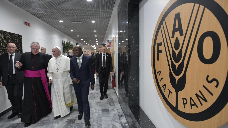 Папа в FAO: любовь – лекарство против социального неравенства
