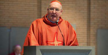 Новым кардиналом-камерленго стал Кевин Фаррелл