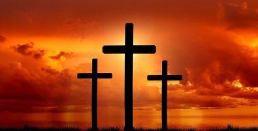 Архиепископ-митрополит Минско-Могилевский Тадеуш Конрусевич призвал остановить снос крестов в Куропатах