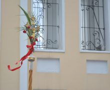 Вербное воскресенье в приходах Преображенской епархии (ФОТО)