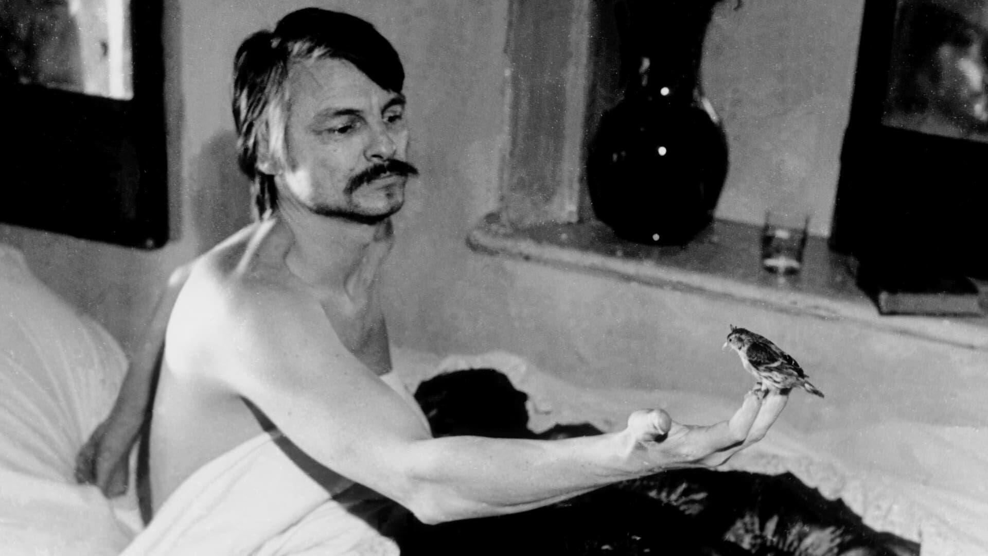 Тарковский и ангел