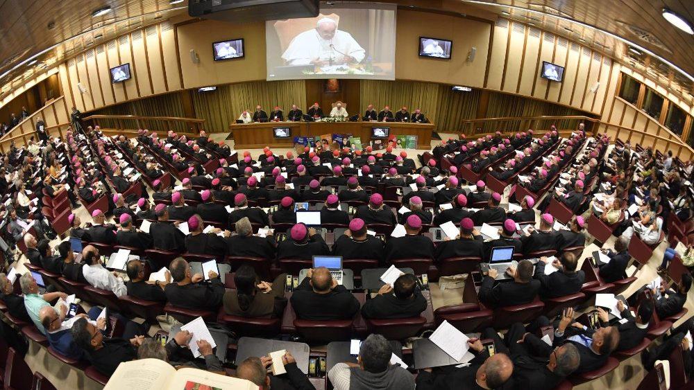 На открытии первого рабочего заседания Синода епископов Папа Франциск призвал понять народы бассейна реки Амазонки и служить им