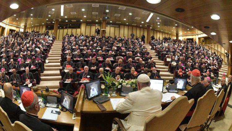 Папа Франциск подвел итоги Синода епископов по Амазонии