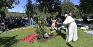 Папа Франциск вверил Синод по Амазонии покровительству святого Франциска