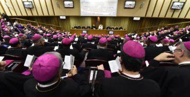 Продолжается Синод по Амазонии: драма наркотрафика и межрелигиозный диалог