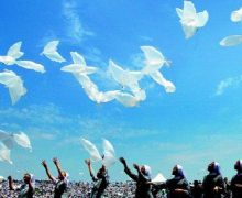Увидело свет Папское послание на Всемирный день мира