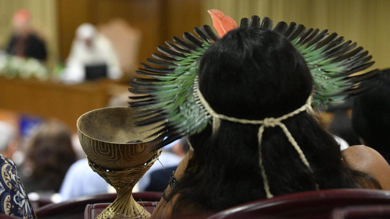 Женатые священники могут появиться в Амазонии уже в ближайшее время – эксперт
