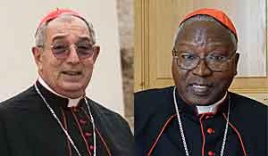 Коронавирус диагностирован у двух кардиналов