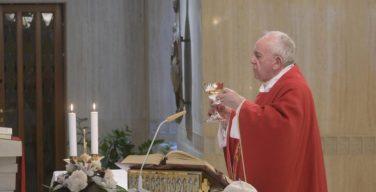 На Мессе в Доме Святой Марфы Папа Франциск молился о прекращении всех пандемий