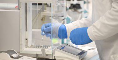 Архиепископ Сиднея: вакцина на основе клеточной линии от абортированных эмбрионов этически неприемлема